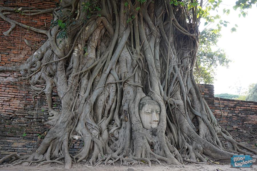 Ayutthaya-Wat-Maha-That-5