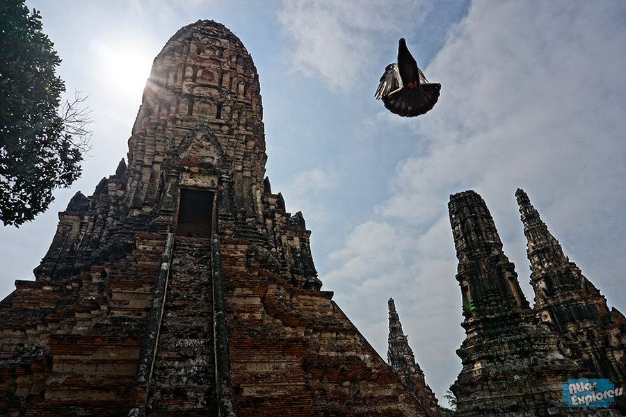 Ayutthaya-by-Bicycle-12